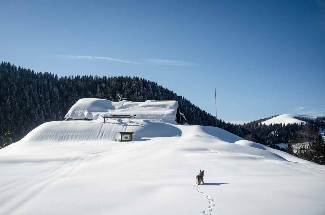 Il Centro didattico ambientale Valpore sommerso di neve - 10 marzo
